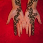 Simple Mehendi 23